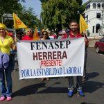 Marcha 1 de Mayo, Delegaciones FENASEP