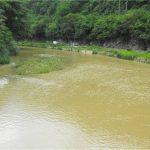 Movimiento campesino del Río Cobre hace denuncias