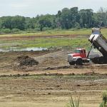 Sin pruebas de delitos ambientales en la bahía