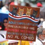 """Gobierno de Carlos Alvarado es """"una vergüenza y una decepción"""" asegura Gloria Valerín"""
